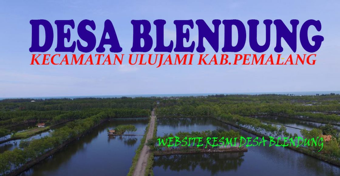 Website Resmi Desa Blendung